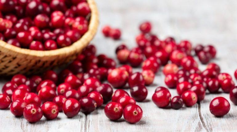Cranberry: ossicocco americano